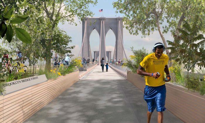 Brooklynský most sepromění apřibude skleněná promenáda izelené plochy