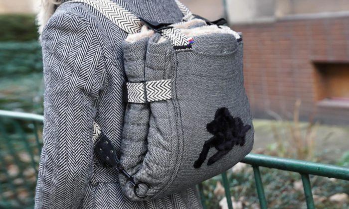 Česká značka Dukes Gang vyrábí cestovní pelíšky pro psy znevyužitých materiálů