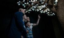 Vzpomínkový interaktivní strom Eiwa slístky zkřišťálového skla