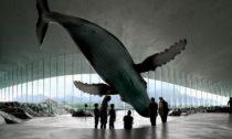 Plánovaná expozice vestavbě The Whale