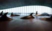 Plánovaná expozice ve stavbě The Whale