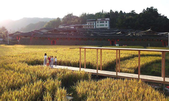 Rýžový pavilon astezka ze dřeva poskytují nový pohled narýžová pole