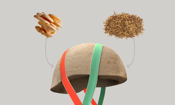 NOS navrhli ekologickou dětskou helmu rostoucí zpodhoubí apilin