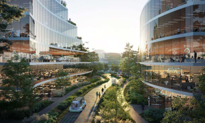 OMA postaví vChengdu městskou čtvrť podřízenou místní zeleni avodě