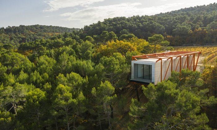 Richard Rogers postavil najihu Francie nad stromy levitující Drawing Gallery