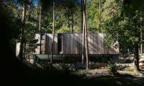 Dům veSkrejši vlese uBrna