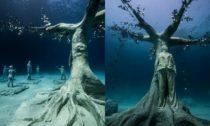 Jason deCaires Taylor a jeho podmořský les na Kypru
