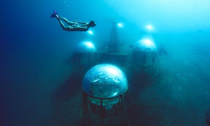 Na severu Itálie stojí první podmořská farma jménem Nemo'sGarden
